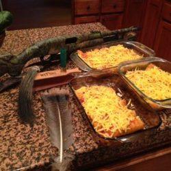 The Final Result: Wild Turkey Enchiladas