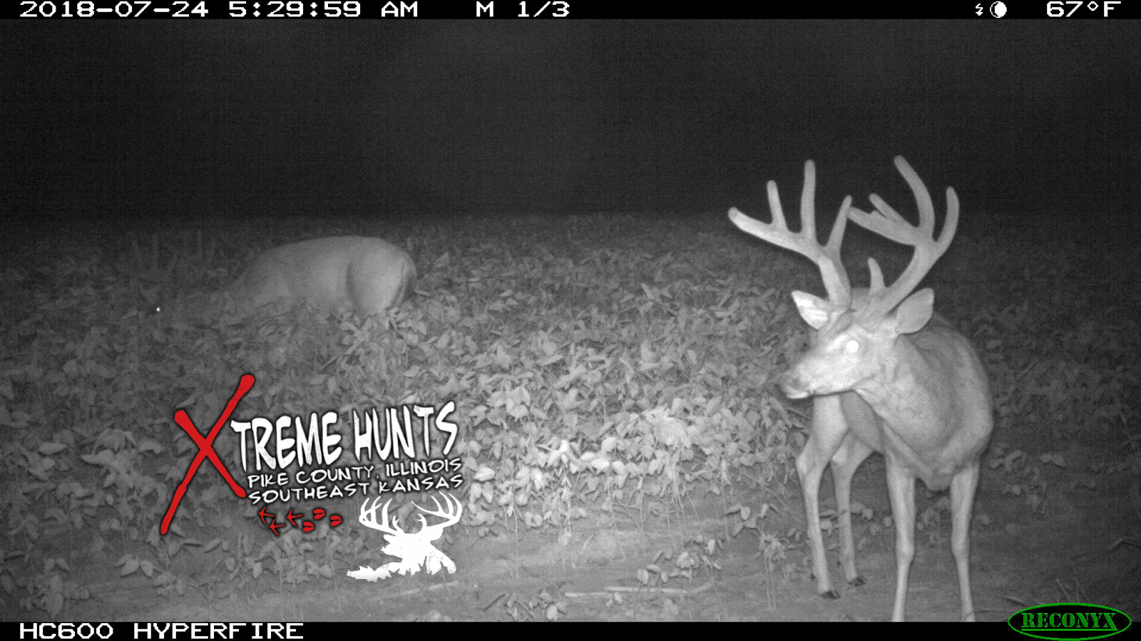 d48e653f9ea Xtreme Hunts - Pike County